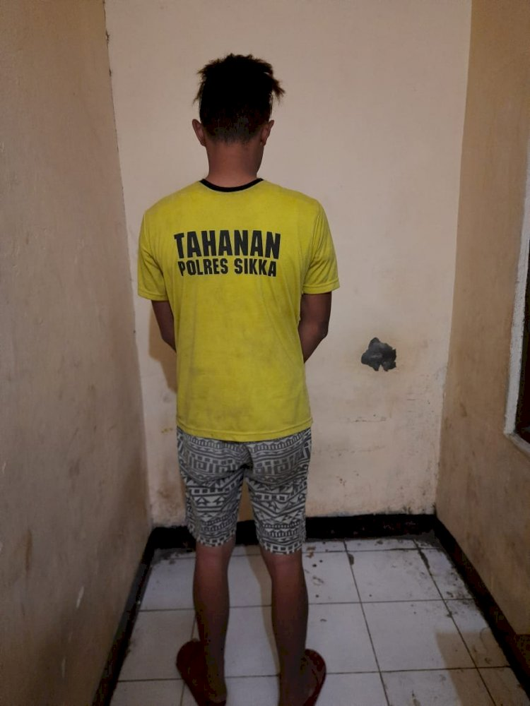 Polres Sikka Tangkap Seorang Pelaku Penyalahgunaan Narkotika Jenis Sabu