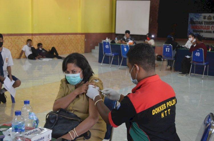 polres sikka kembali gelar vaksinasi tahap II di aula P.A TIWON